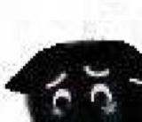 :blackcat_11130: